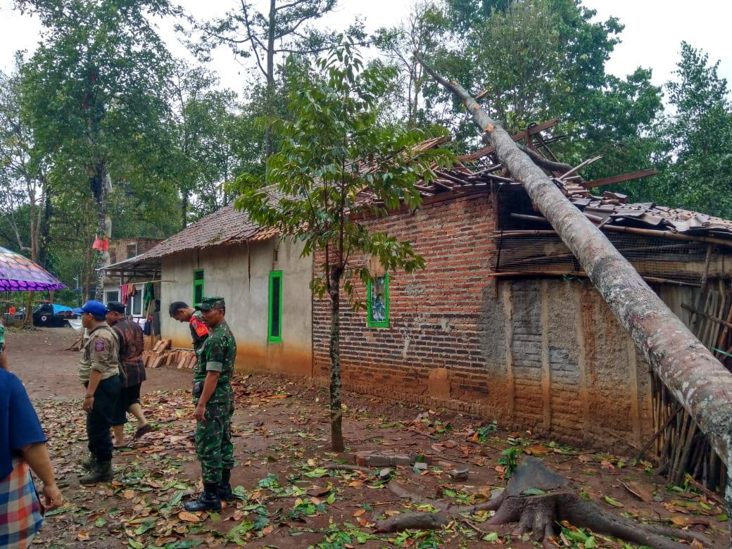 Pohon Tumbang Akibat Angin Puting Beliung